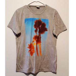 Hollister Mens T Shirt Gray Palm Trees California